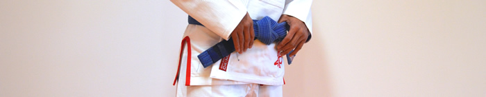 Brazilian Jiu Jitsu - Levels - Blue Belt