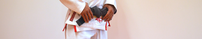 Brazilian Jiu Jitsu - Levels - Brown Belt